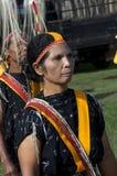 Dansa i traditionell kläder Flores Indonesien Royaltyfri Fotografi
