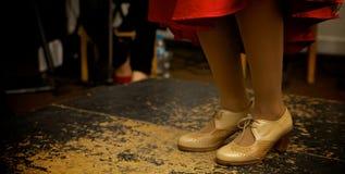 dansare dansar spanjor för illustration för ventilatorflamencoflicka Fotografering för Bildbyråer