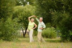 Danse aînée heureuse de couples Images libres de droits