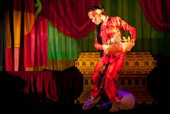 Danse classique de Birman Photos libres de droits