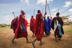 Danse d'accueil de Maasai photographie stock