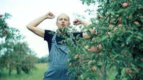 Danse d'agriculteur d'Apple banque de vidéos