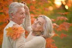 Danse d'une cinquantaine d'années heureuse de couples en parc d'automne Photo stock