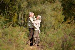 Danse d'une cinquantaine d'années heureuse de couples en parc d'automne Photographie stock libre de droits