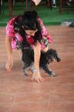 Danse de chien Image libre de droits