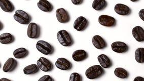 Danse de grains de café sur le fond blanc, concept éveillé banque de vidéos