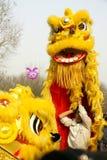 Danse de lion images stock