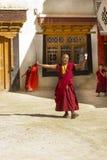 Danse de moine et prière dans Lamayuru, ladakh Photos stock