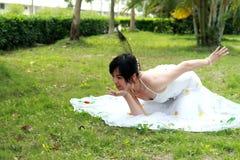 Danse de paon Photographie stock