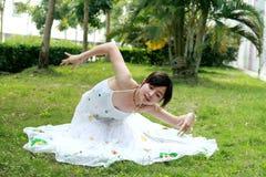 Danse de paon Image libre de droits