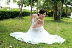 Danse de paon Photographie stock libre de droits