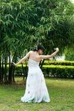Danse de paon Images stock