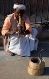 Danse de serpent de cobra Photo libre de droits
