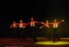 Danse du monde de l'Autriche cavalier-espagnole de flamenco-le de tauromachie Images stock