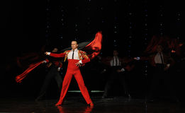 Danse du monde de l'Autriche Chevalier-espagnole belle de flamenco-le Images stock