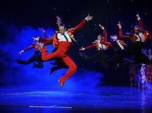 Danse du monde de l'Autriche saut-espagnole de flamenco-le de cavalier Photos libres de droits