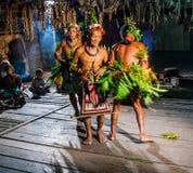 Danse rituelle de danse de tribu de Mentawai d'hommes Photographie stock libre de droits