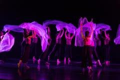 Danse transparente 3 d'écharpe--Âne de drame de danse obtenir l'eau photo stock
