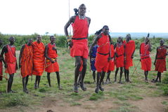Danse tribale de masai image libre de droits