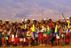 Danse tubulaire au Souaziland (Afrique) Image libre de droits