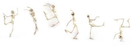 Dansend Skelet Stock Afbeeldingen