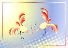 Dansende kranen Royalty-vrije Stock Fotografie