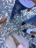 Dansende vloer Stock Foto's