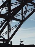 Danserssilhouet onder brug Stock Afbeelding