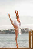 Danseur classique photographie stock