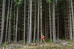 Danseur classique posant dehors image libre de droits