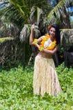 Danseur de danse polynésienne d'Hawaï image stock