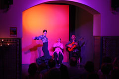 Danseur de flamenco Images libres de droits