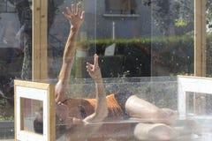 Danseur humide dans un aquarium Photographie stock