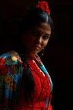 Danseur Jeranys La Yera de flamenco Image stock