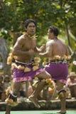 Danseur samoan 1578 Photographie stock