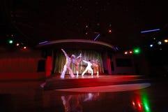 Danseurs dans une boîte de nuit Photos stock