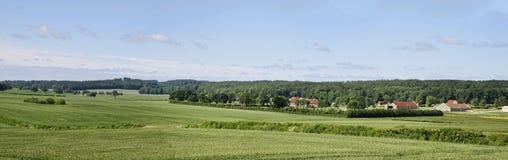 Dansk bygd i sommaren panorama arkivbild
