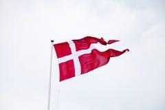 Danska delad flagga som vinkar på ljus bakgrund Arkivbild