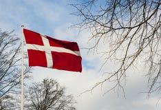 Danskaflagga som vinkar i vinden Arkivfoton