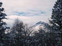 Danskvinnaberg, vinter Royaltyfri Foto