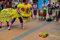 Dansskådespelartruppen utför den kinesiska lejondansen, Singapore Royaltyfri Foto