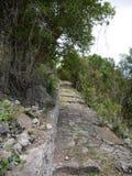 Dansslinga, Saba Royaltyfria Bilder