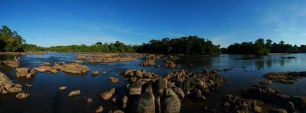 Danta bai daylight. Panorama of the danta bai river in the suriname rain forest during daylight Royalty Free Stock Photography