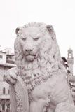 Dante Statue in Florenz; Italien Stockbilder