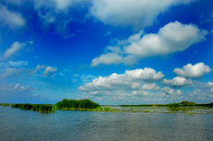Danube Delta. Landscape in Danube Delta, Romania Stock Photos