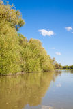 Danube Delta Royalty Free Stock Images