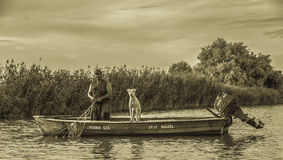 Danube delta Zdjęcia Stock