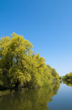 Danube Delta Channel Royalty Free Stock Images