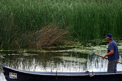 Danube Delta fisherman Royalty Free Stock Image