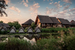 Danube delta Gheorghe Zdjęcia Royalty Free